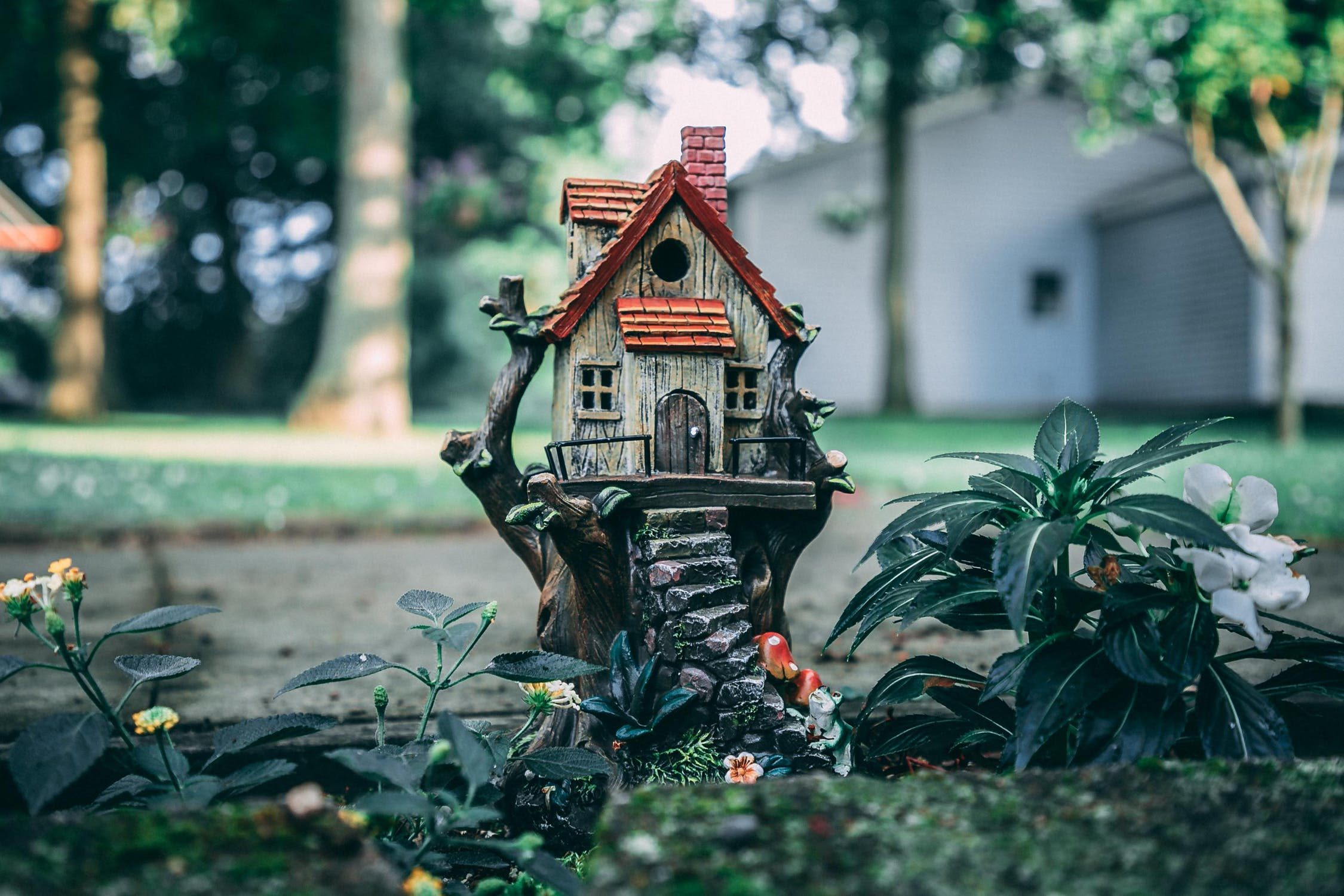 Jak skutecznie usunąć pleśń i wilgoć z mieszkania?