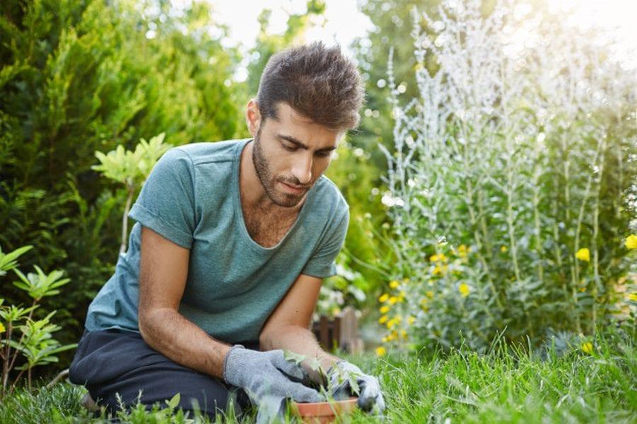 Jak urządzić ogród przydomowy?