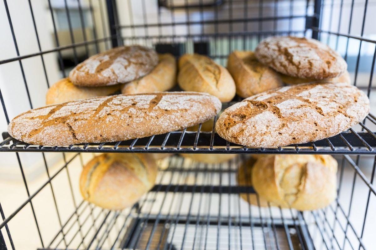 Produkty zbożowe jako integralna część modelu żywienia