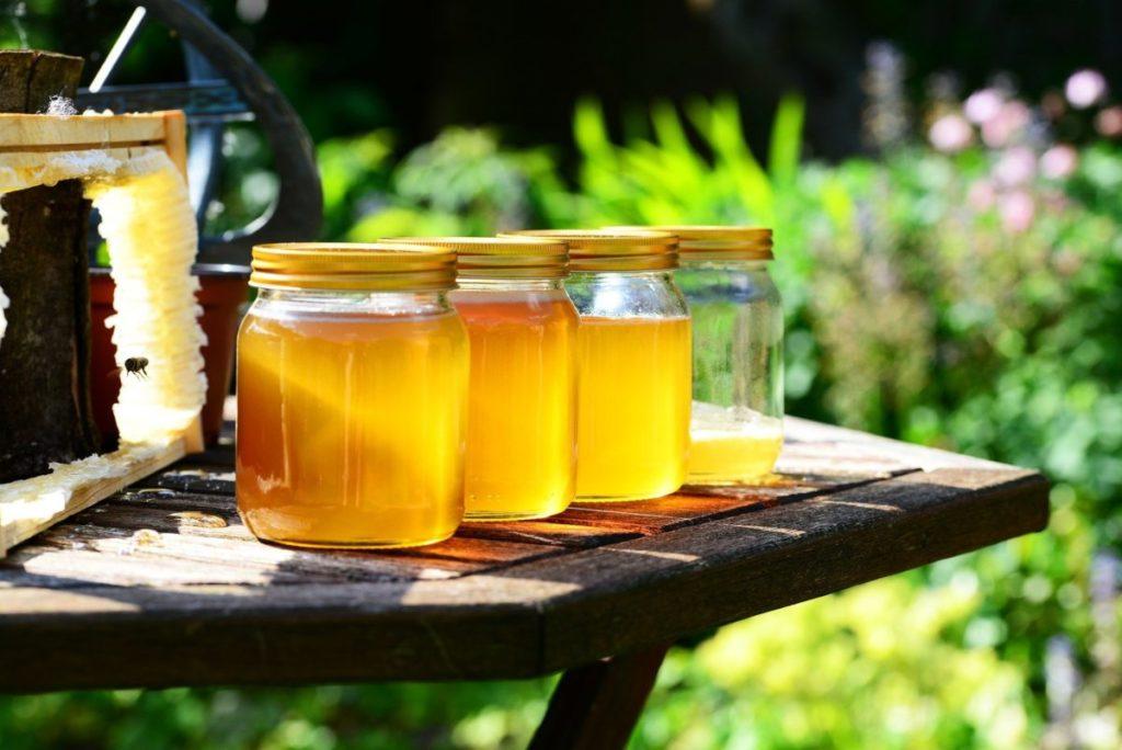 Miód słonecznikowy